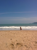 On Nha Trang Beach when I caught this dog waiting for his owner who's out swimming.